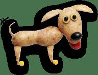 image-chien